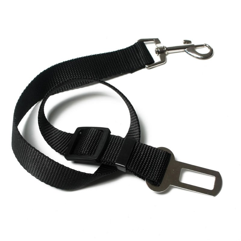 dog seat belts 10