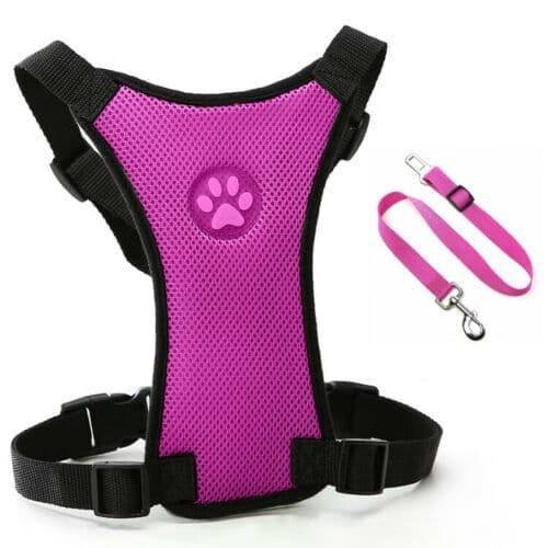 pink dog seat belt